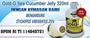 gold-g sea cucumber.6